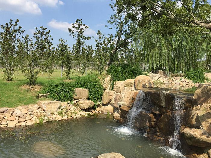 江苏大阳山国家森林公园植物园二期景观绿化工程二标段